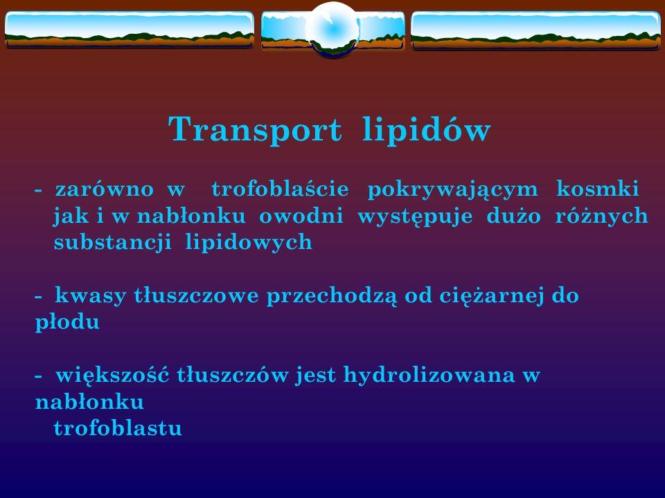 Transport lipidów - zarówno w trofoblaście pokrywającym kosmki jak i w nabłonku owodni występuje dużo różnych substancji lipidowych - kwasy tłuszczowe przechodzą od ciężarnej do płodu - większość tłuszczów jest hydrolizowana w nabłonku trofoblastu