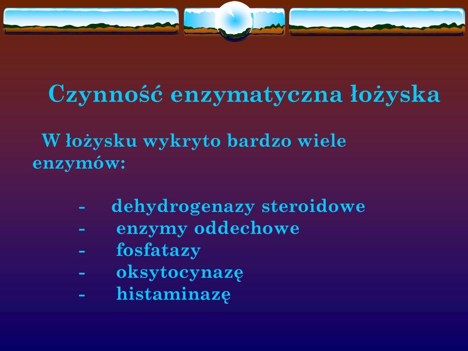 Czynność enzymatyczna łożyska. W łożysku wykryto bardzo wiele enzymów: