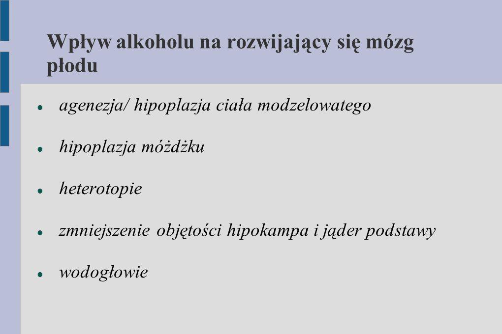 Wpływ alkoholu na rozwijający się mózg płodu