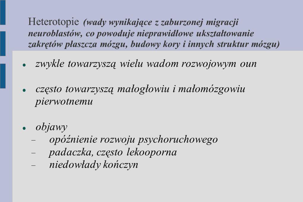 Heterotopie (wady wynikające z zaburzonej migracji neuroblastów, co powoduje nieprawidłowe ukształtowanie zakrętów płaszcza mózgu, budowy kory i innych struktur mózgu)