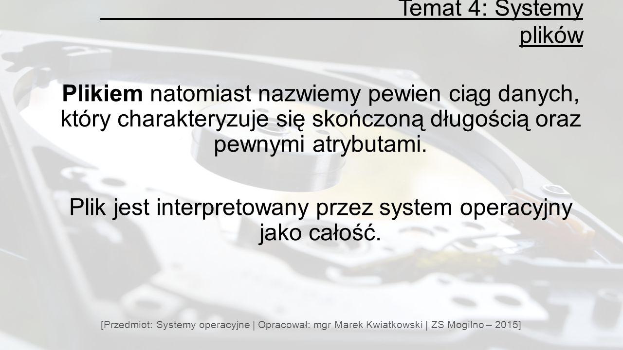 Plik jest interpretowany przez system operacyjny jako całość.
