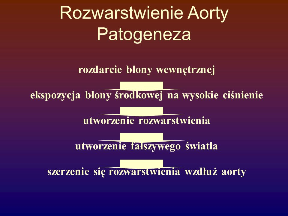 Rozwarstwienie Aorty Patogeneza
