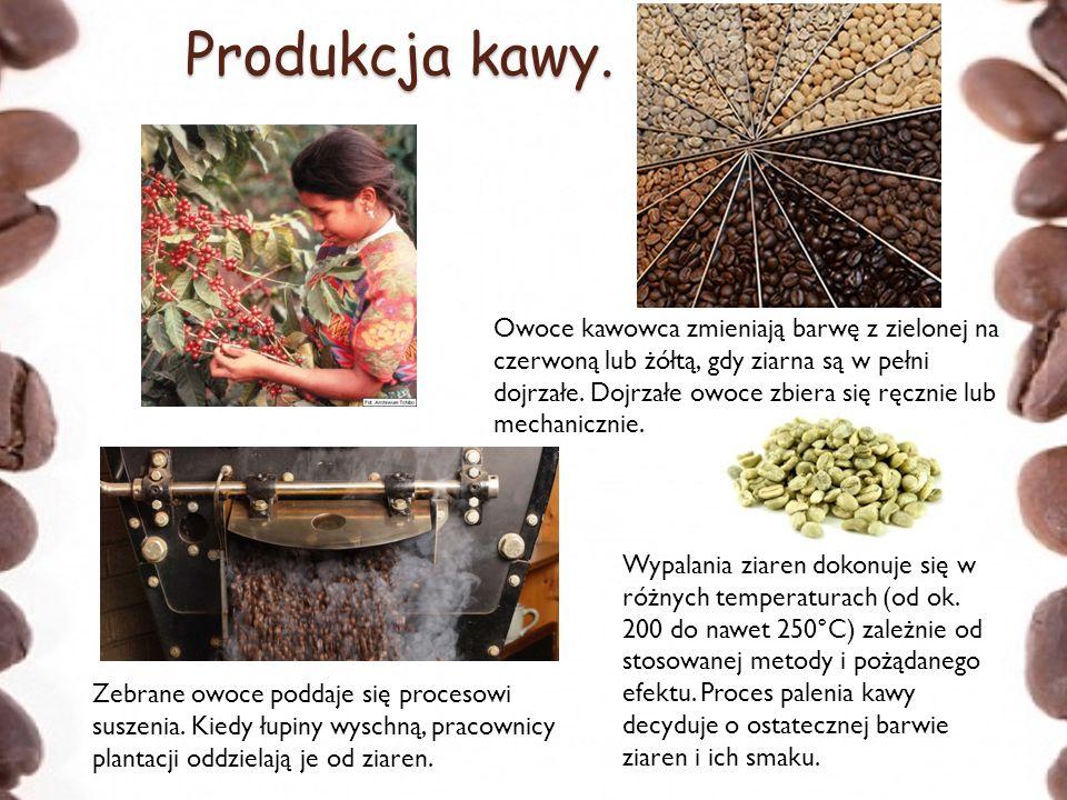 Produkcja kawy.