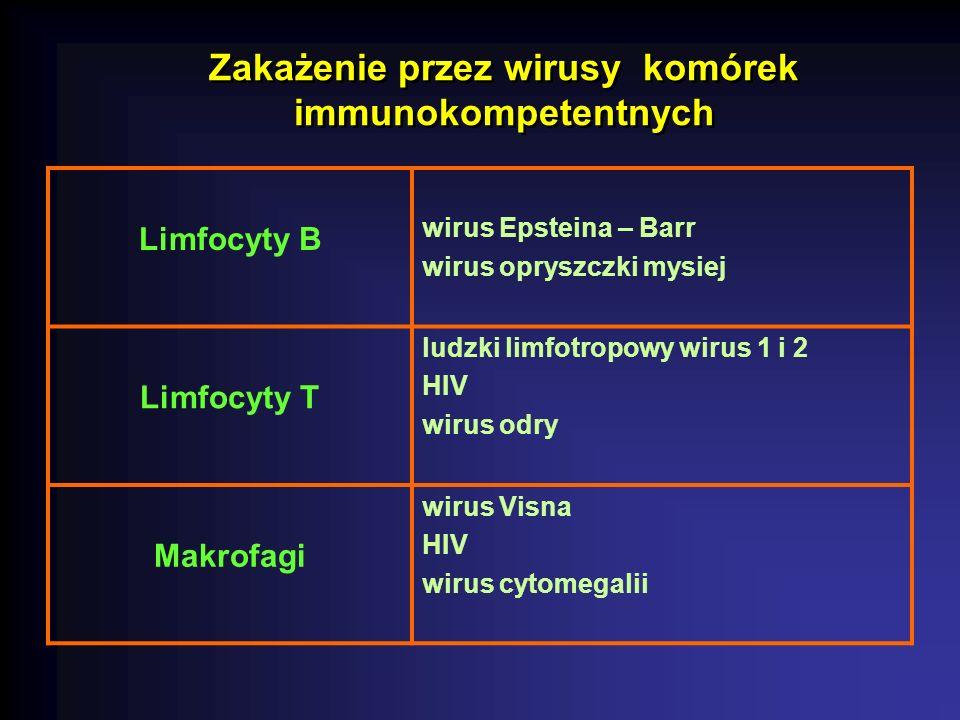 Zakażenie przez wirusy komórek immunokompetentnych