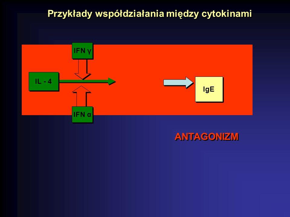 Przykłady współdziałania między cytokinami
