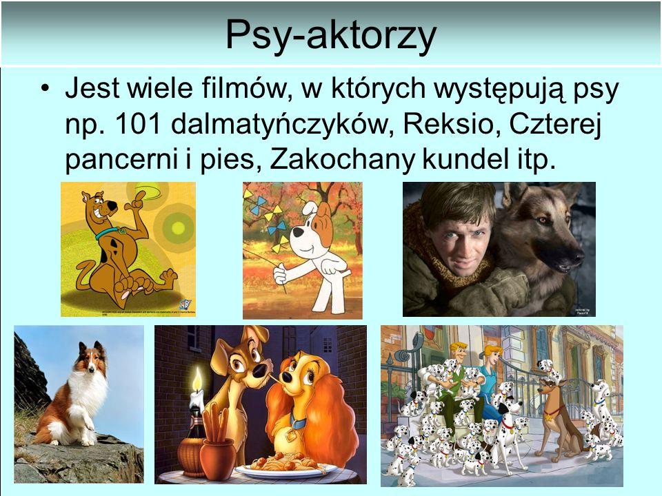 Psy-aktorzy Jest wiele filmów, w których występują psy np.