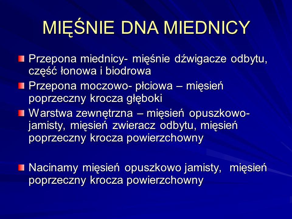 MIĘŚNIE DNA MIEDNICY Przepona miednicy- mięśnie dźwigacze odbytu, część łonowa i biodrowa.