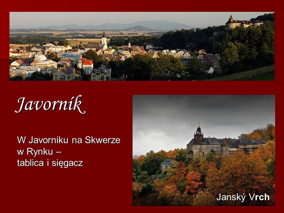 Javorník W Javorniku na Skwerze w Rynku – tablica i sięgacz
