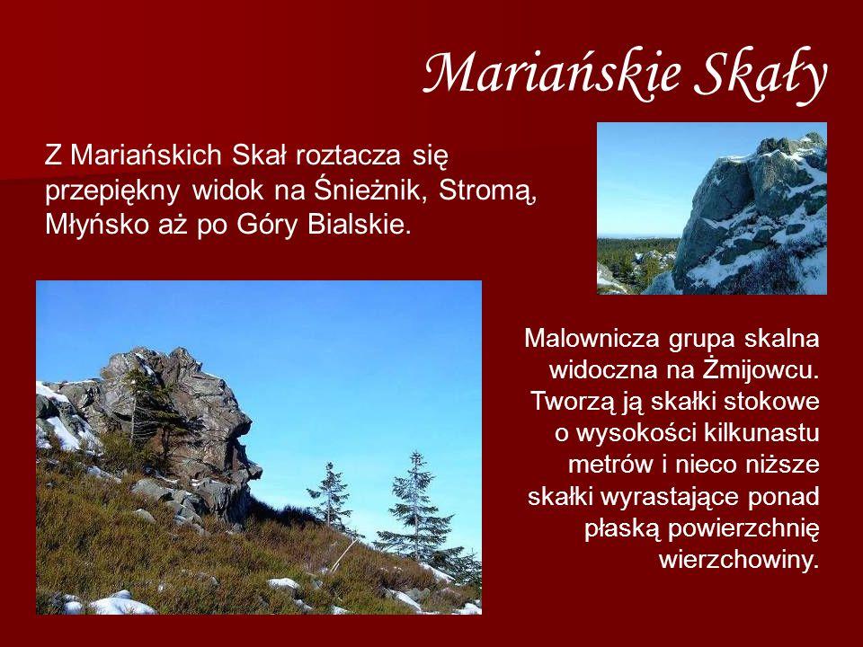 Mariańskie Skały Z Mariańskich Skał roztacza się przepiękny widok na Śnieżnik, Stromą, Młyńsko aż po Góry Bialskie.