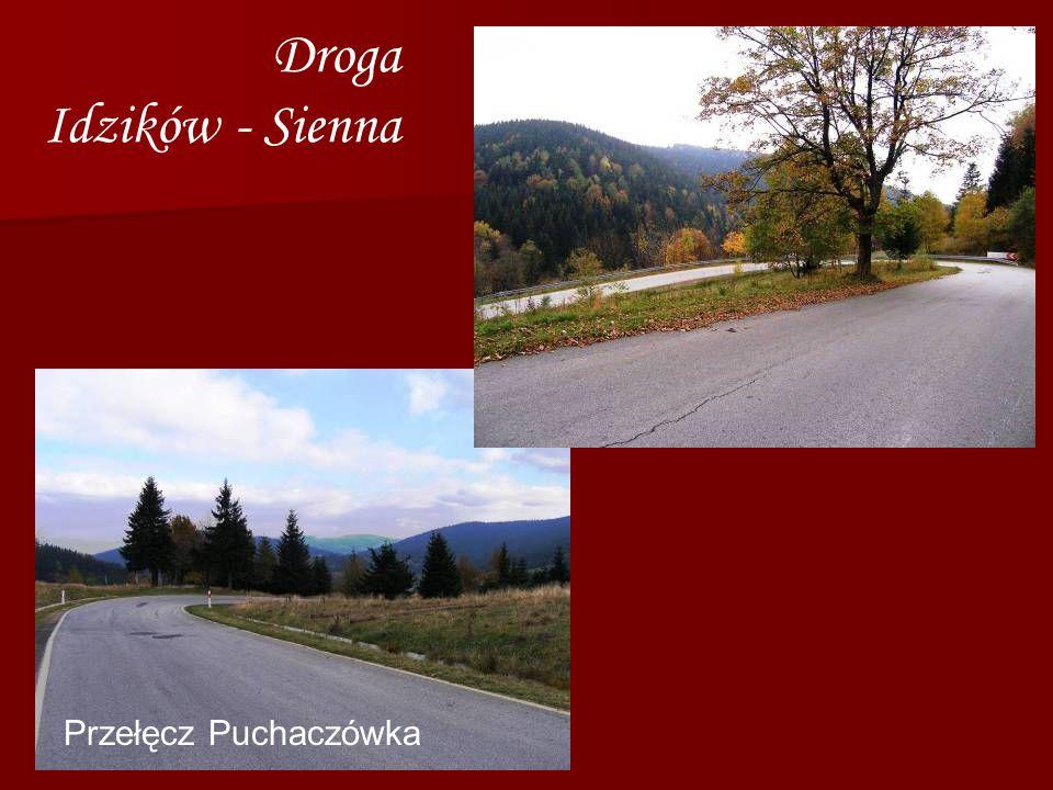 Droga Idzików - Sienna Przełęcz Puchaczówka