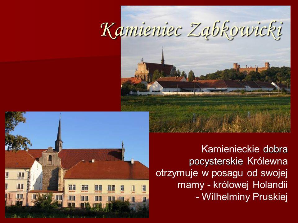 Kamieniec ZąbkowickiKamienieckie dobra pocysterskie Królewna otrzymuje w posagu od swojej mamy - królowej Holandii.