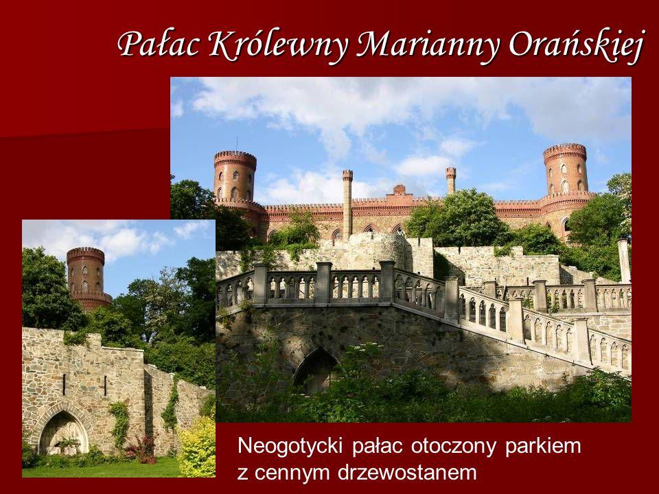 Pałac Królewny Marianny Orańskiej