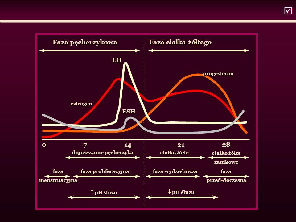  Faza pęcherzykowa Faza ciałka żółtego 0 7 14 21 28 LH FSH estrogen