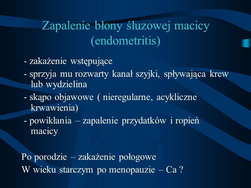 Zapalenie błony śluzowej macicy (endometritis)