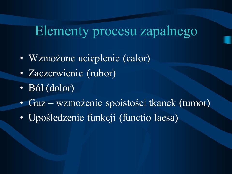 Elementy procesu zapalnego