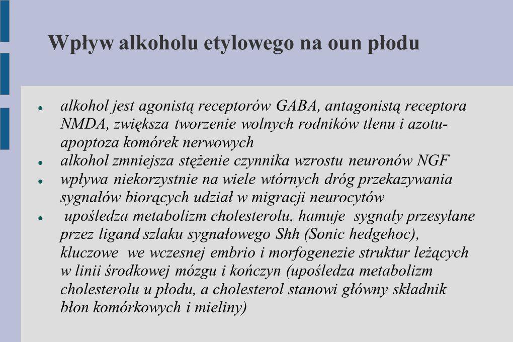 Wpływ alkoholu etylowego na oun płodu