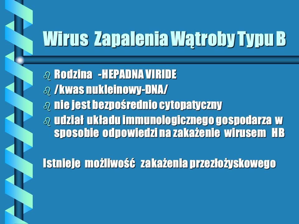 Wirus Zapalenia Wątroby Typu B