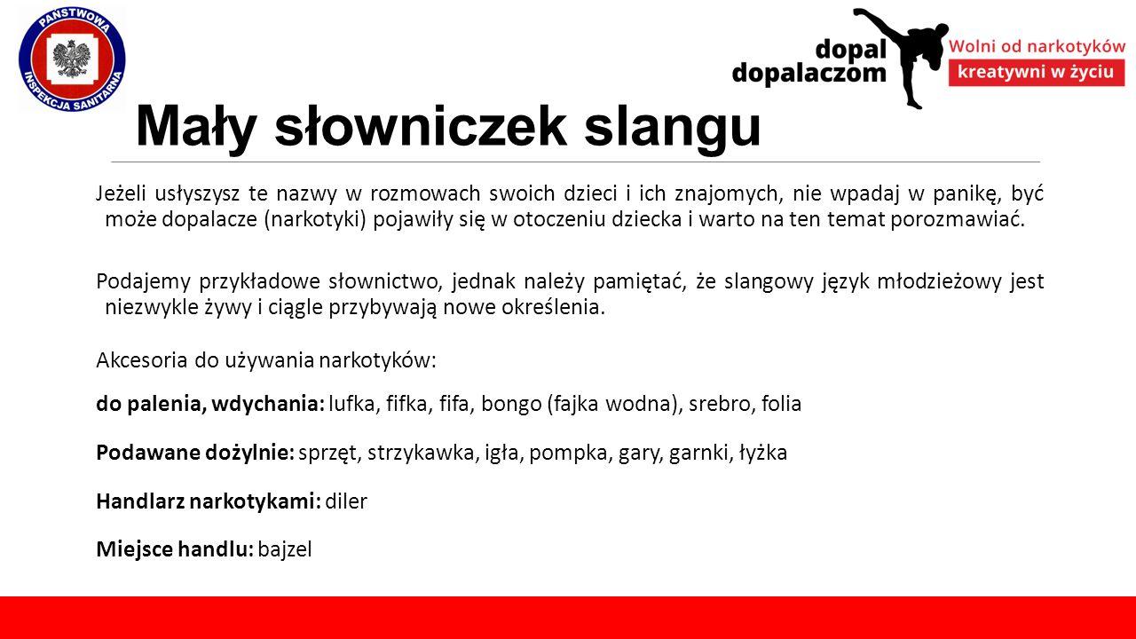 Mały słowniczek slangu