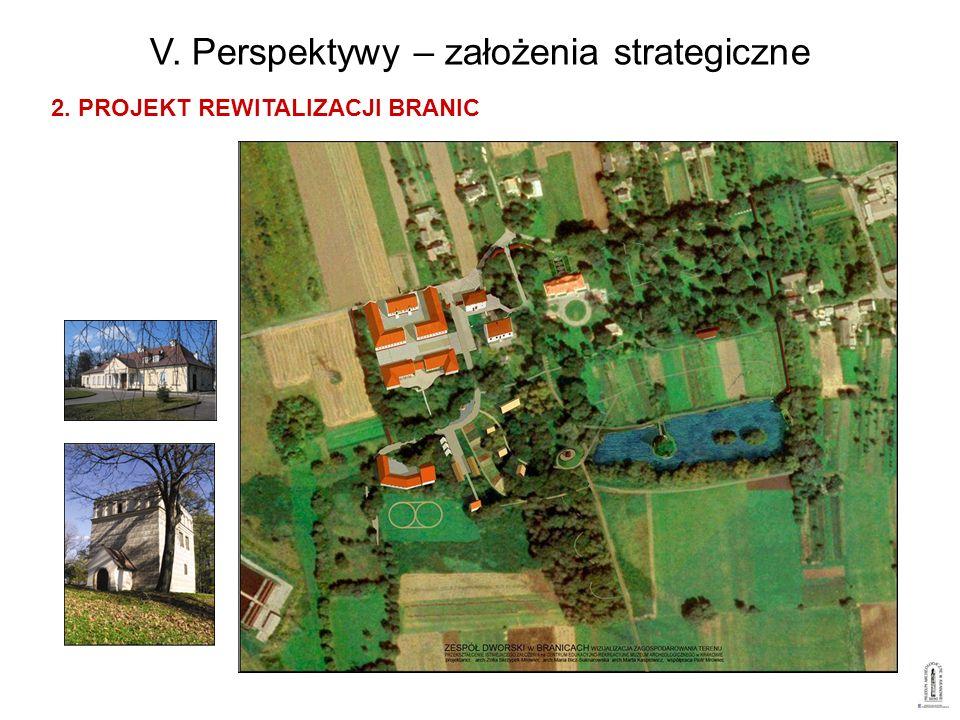 V. Perspektywy – założenia strategiczne