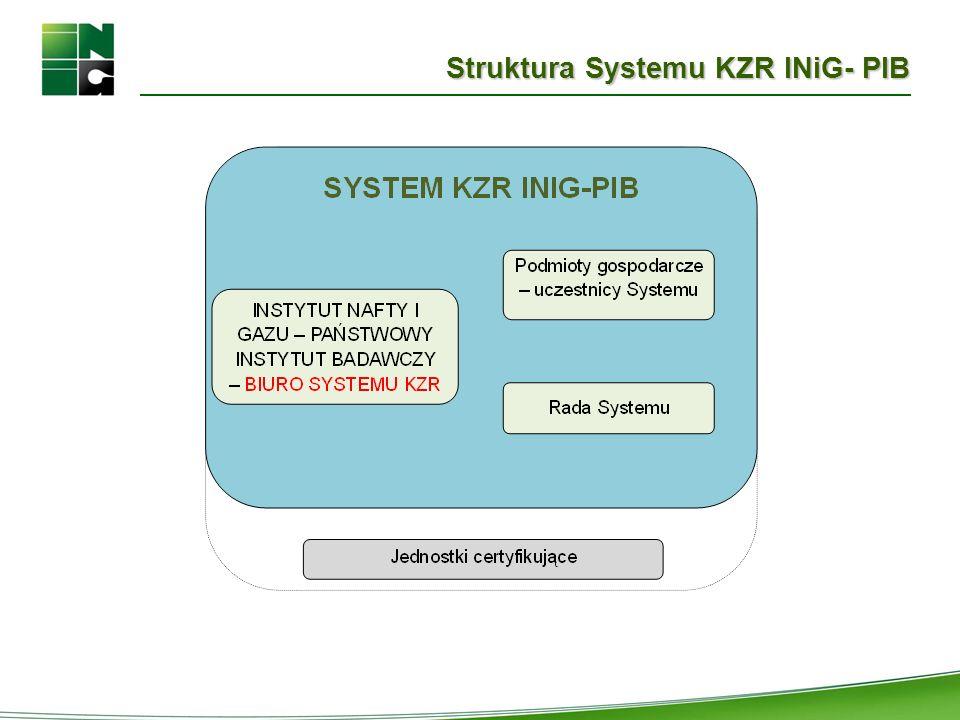 Struktura Systemu KZR INiG- PIB