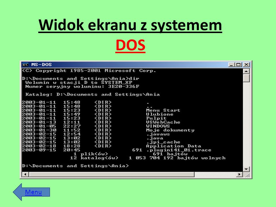 Widok ekranu z systemem DOS