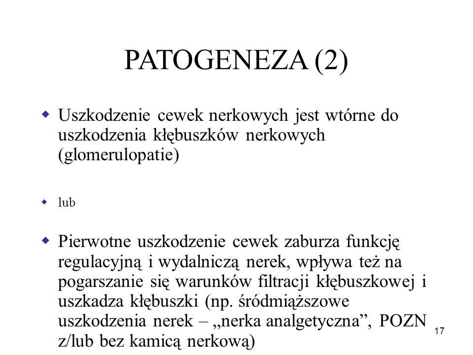 PATOGENEZA (2) Uszkodzenie cewek nerkowych jest wtórne do uszkodzenia kłębuszków nerkowych (glomerulopatie)