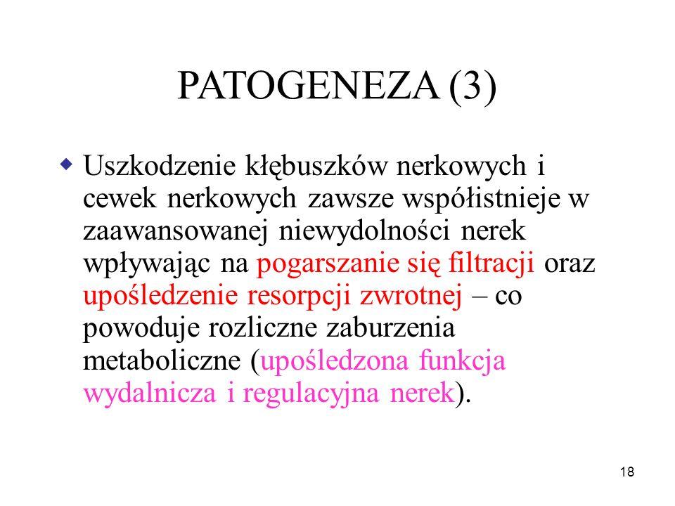 PATOGENEZA (3)