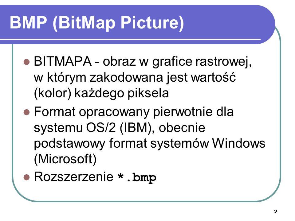 BMP (BitMap Picture) BITMAPA - obraz w grafice rastrowej, w którym zakodowana jest wartość (kolor) każdego piksela.