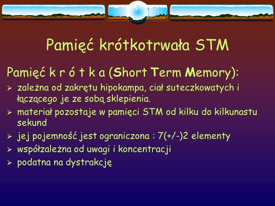 Pamięć krótkotrwała STM