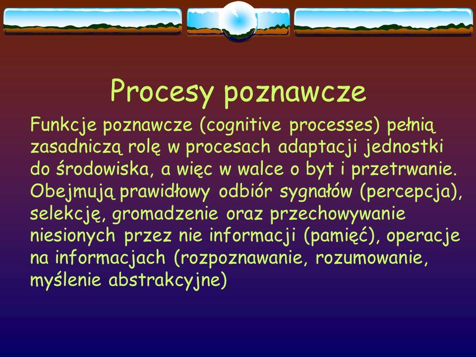 Procesy poznawcze