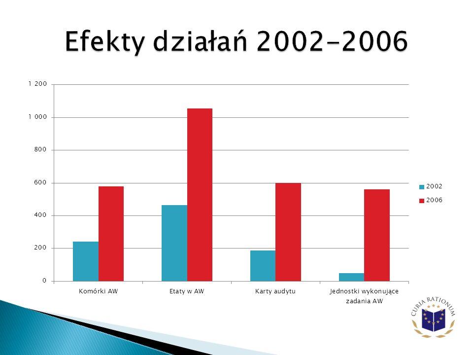 Efekty działań 2002-2006