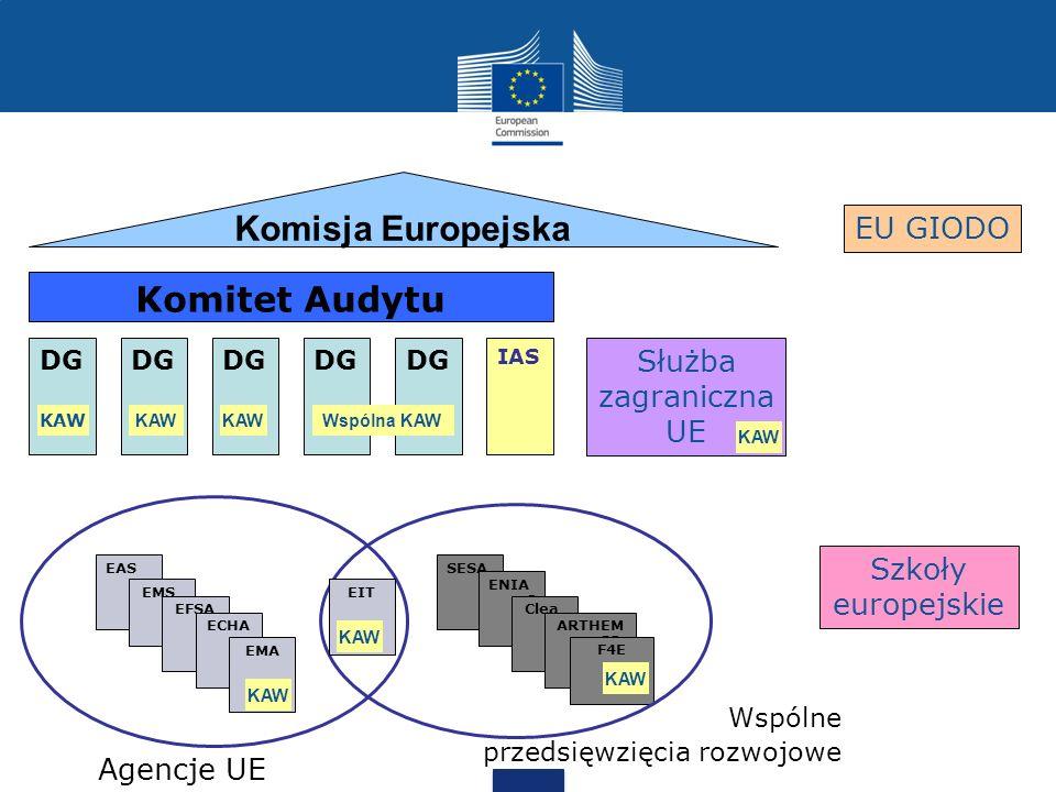 Komisja Europejska Komitet Audytu EU GIODO Służba zagraniczna UE