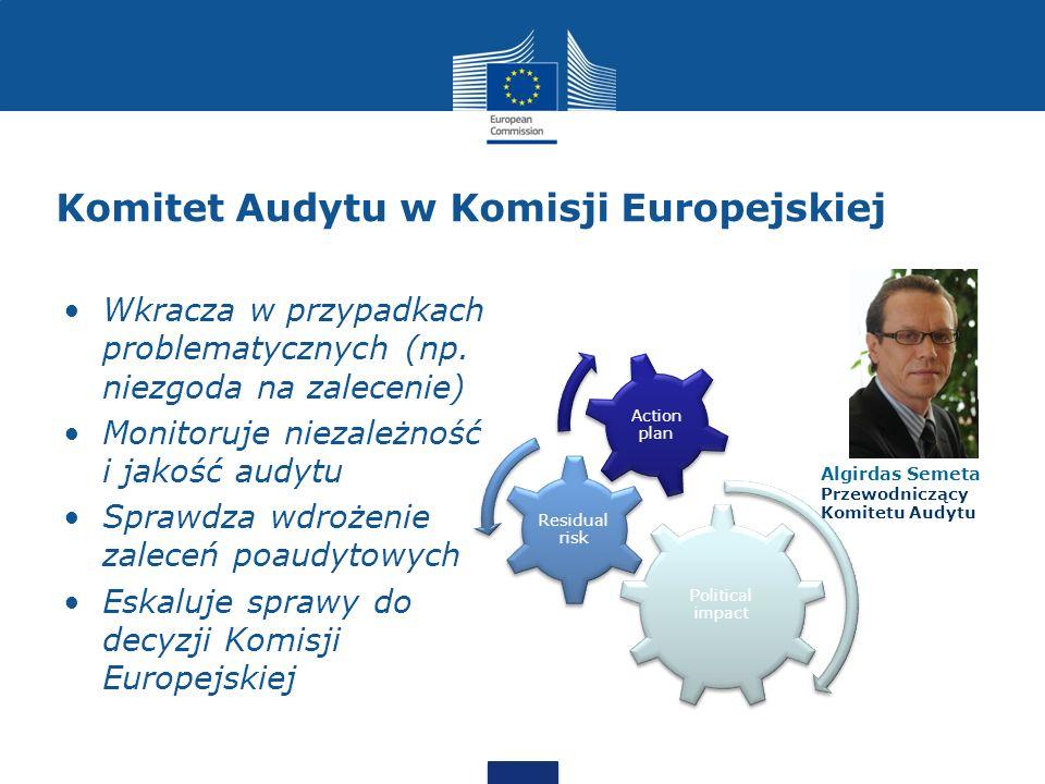 Komitet Audytu w Komisji Europejskiej
