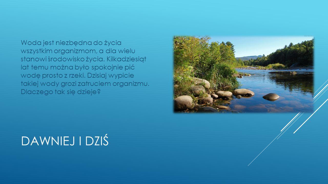 Woda jest niezbędna do życia wszystkim organizmom, a dla wielu stanowi środowisko życia. Kilkadziesiąt lat temu można było spokojnie pić wodę prosto z rzeki. Dzisiaj wypicie takiej wody grozi zatruciem organizmu. Dlaczego tak się dzieje