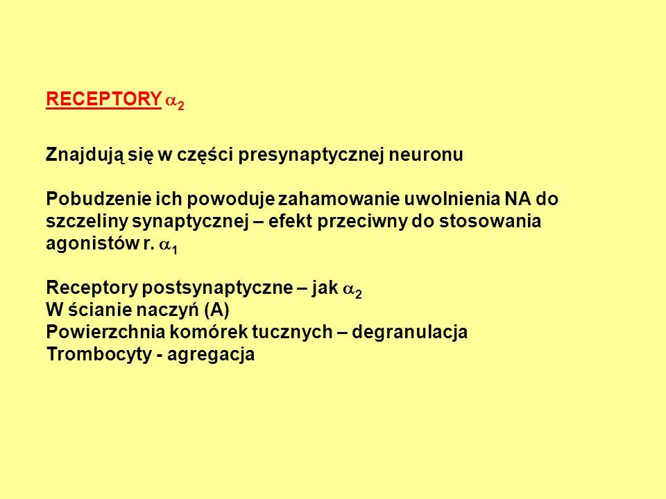 RECEPTORY 2 Znajdują się w części presynaptycznej neuronu.