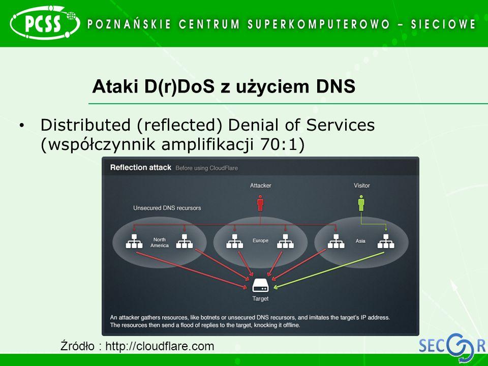 Ataki D(r)DoS z użyciem DNS
