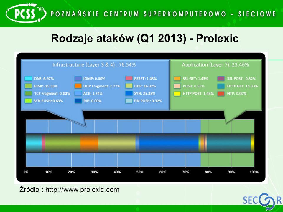 Rodzaje ataków (Q1 2013) - Prolexic
