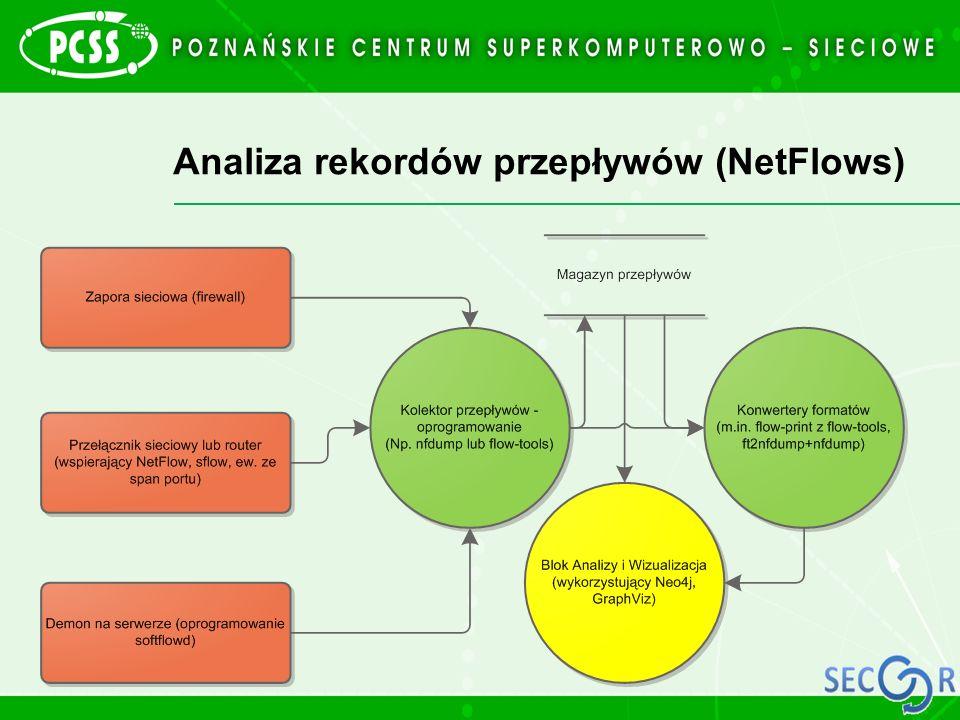 Analiza rekordów przepływów (NetFlows)