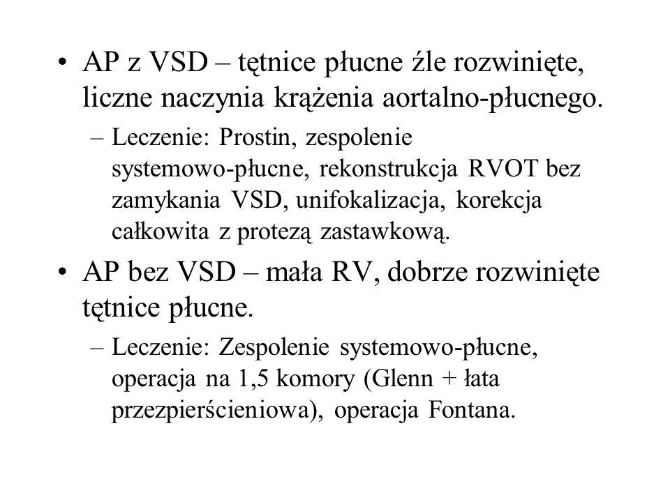 AP bez VSD – mała RV, dobrze rozwinięte tętnice płucne.
