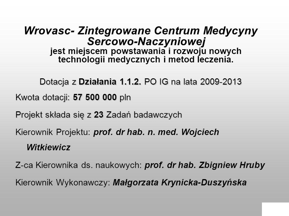 Dotacja z Działania 1.1.2. PO IG na lata 2009-2013