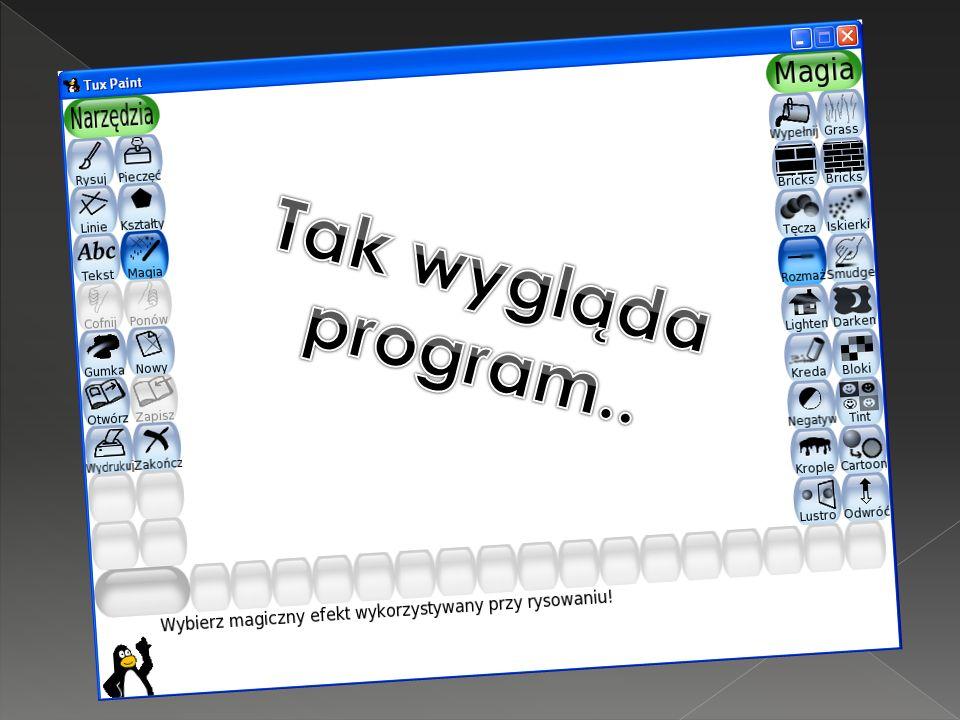 Tak wygląda program..