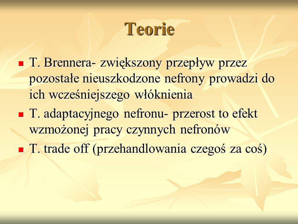 Teorie T. Brennera- zwiększony przepływ przez pozostałe nieuszkodzone nefrony prowadzi do ich wcześniejszego włóknienia.