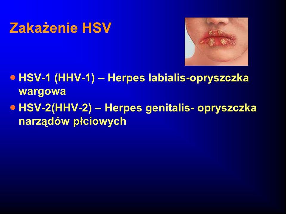 Zakażenie HSV HSV-1 (HHV-1) – Herpes labialis-opryszczka wargowa