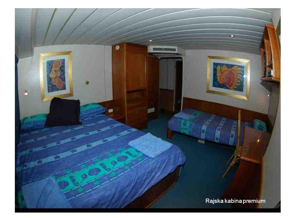 Paradise premium cabin