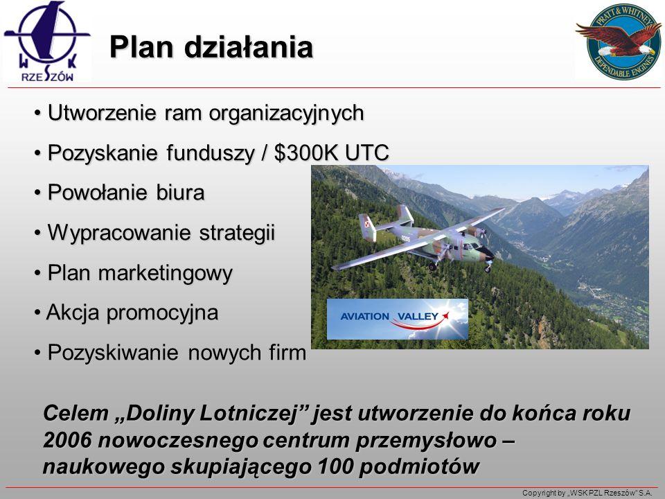 Plan działania Utworzenie ram organizacyjnych