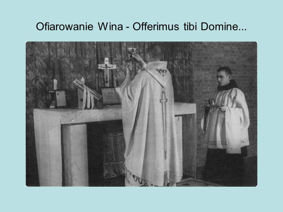 Ofiarowanie Wina - Offerimus tibi Domine...