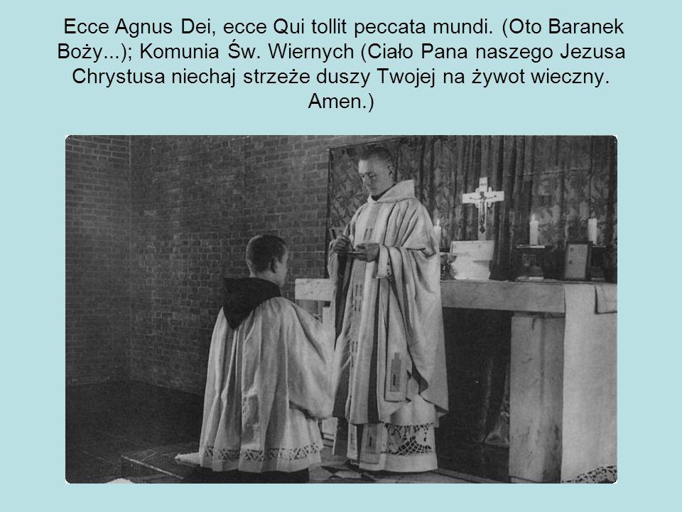 Ecce Agnus Dei, ecce Qui tollit peccata mundi. (Oto Baranek Boży