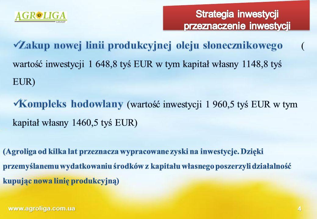 Strategia inwestycji przeznaczenie inwestycji