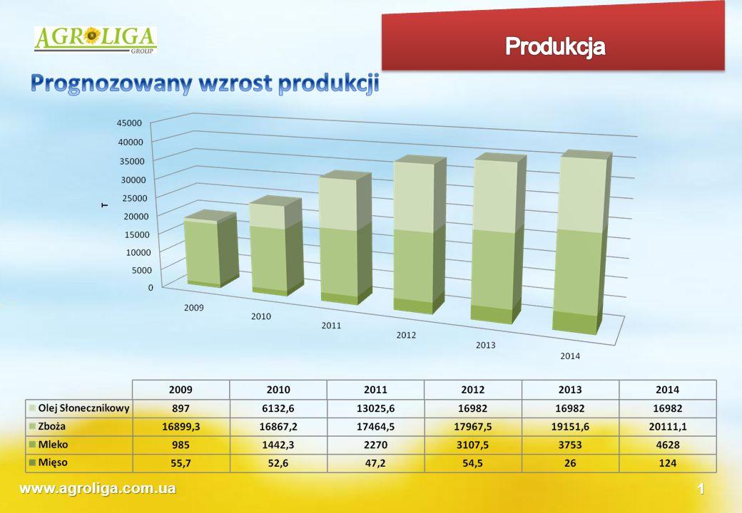 Prognozowany wzrost produkcji