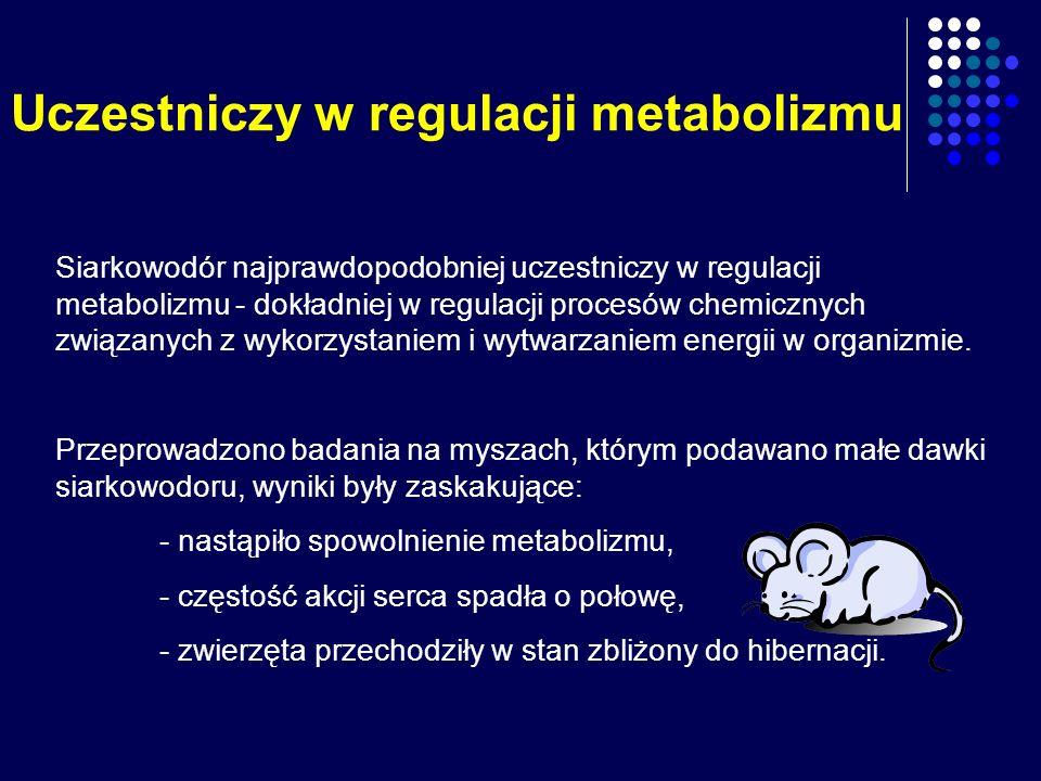 Uczestniczy w regulacji metabolizmu